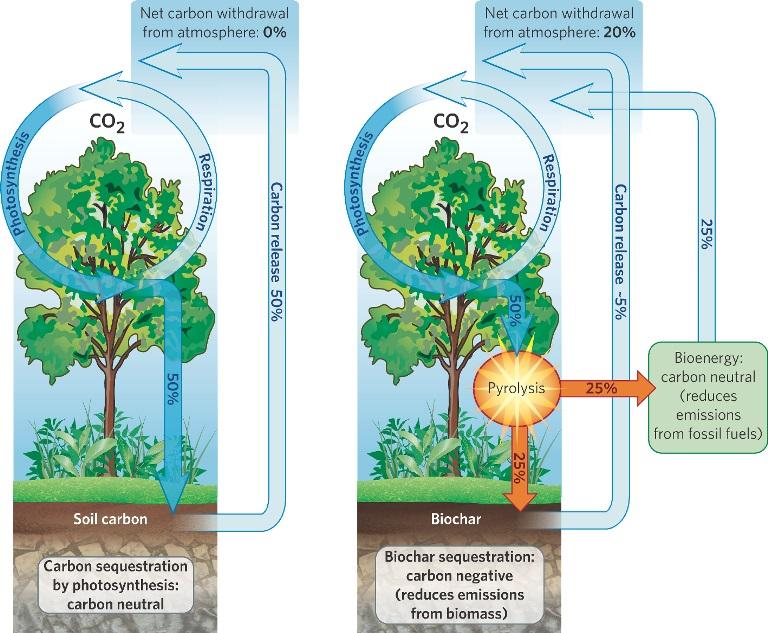nature_diagram